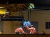 Baustelle auf der Westbahnstrecke, Nachtarbeit mit Spezialkran für das Einbringen von Weichenelementen in der Nacht von 25.08. auf 26.08.2020   Foto und Copyright: Moser Albert, Fotograf, 5201 Seekirchen, Weinbergstiege 1, Tel.: 0043-676-7550526 mailto:albert.moser@sbg.at  www.moser.zenfolio.com
