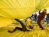 """Festival Supergau für zeitgenössische KUnst (18 Projekte vom 14.-24.05.2021) am 20.05.2021    Projekt """"Das Gelbe vom Gau"""" Temporäre Skulptur in Schöngumprechting in Seekirchen von den Künstlern Moritz Matschke und Anna Pech: Mythos Ikarus – über die erste bemannte Heißluftballonfahrt zur Sonne.   Jens Höffken, Performance.   CieLaroque Zeitgenössischer Tanz   Foto und Copyright: Moser Albert, Fotograf, 5201 Seekirchen, Weinbergstiege 1, Tel.: 0043-676-7550526 mailto:albert.moser@sbg.at  www.moser.zenfolio.com"""